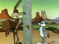 operation rabbit