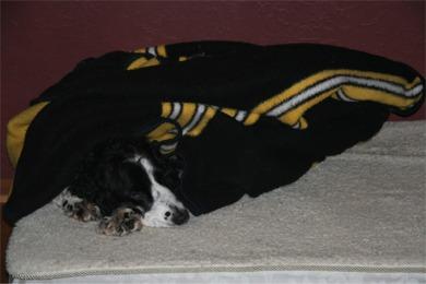 ed blanket 002_sm.jpg