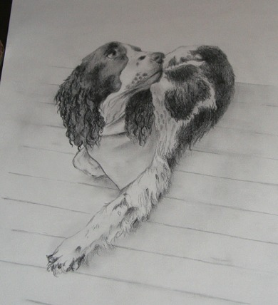 ed drawing 009.jpg